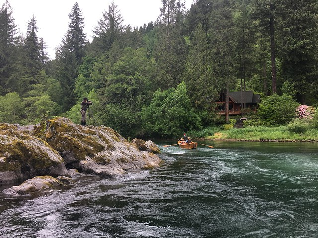mckenzie river fly fishing guides