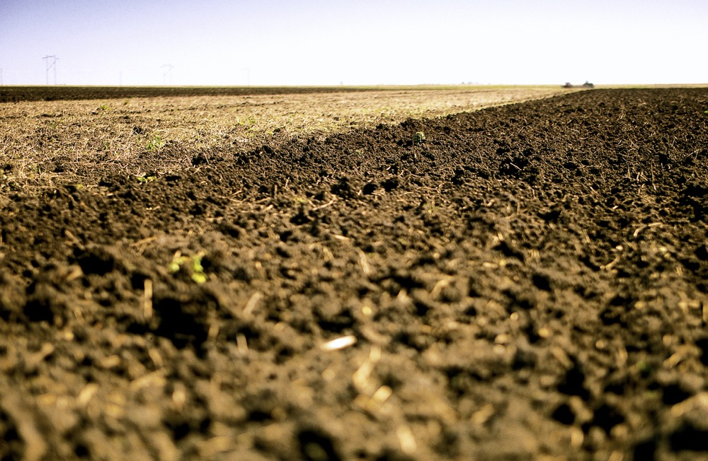 agronomy guide for field crops