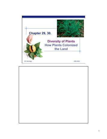 raven chapter 11 guided notes answers